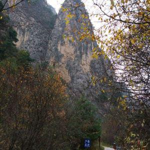 贵清山旅游风景区旅游景点攻略图