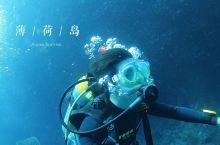 #网红打卡地#阿罗娜潜水之旅