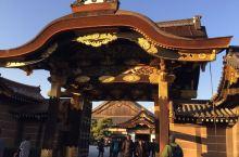 京都红叶行6