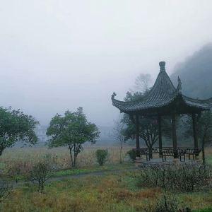 黄村旅游景点攻略图