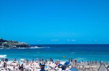 羡慕悉尼人,有这样一片蔚蓝海岸。