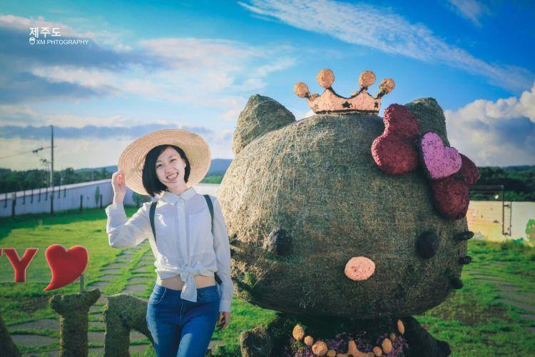 Hello Kitty Island4