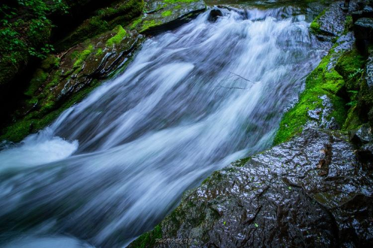 六盤山國家森林公園4