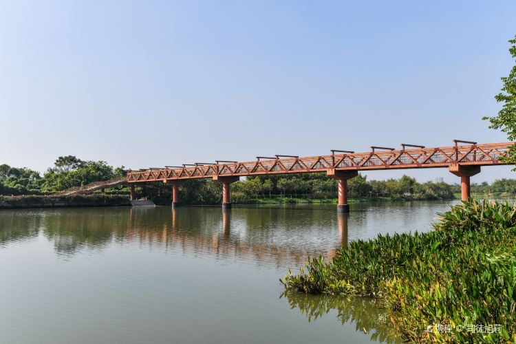 Haizhu National Wetland Park2
