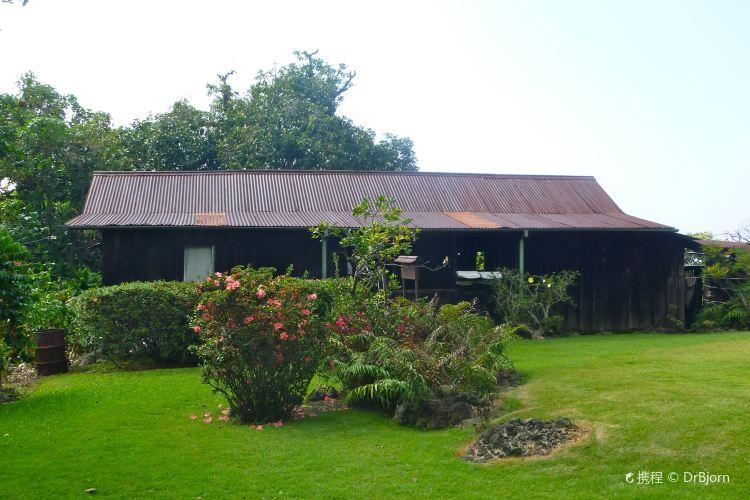 科納咖啡歷史農園1
