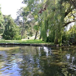 比肯丘公园旅游景点攻略图