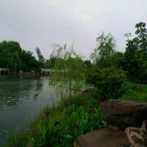 中山公园旅游景点攻略图