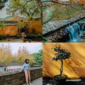 临海游记图文-#深秋和你·台州行# 翻山越岭奔向你,一个自带光环的爆款旅行地