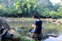 """海南文昌春山村冷泉湖,免费泡天然鱼疗,""""痒到心里的""""午后享受"""