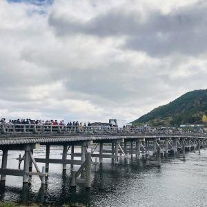 渡月桥旅游景点攻略图