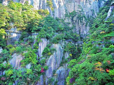 Sanqingshan Scenic Area