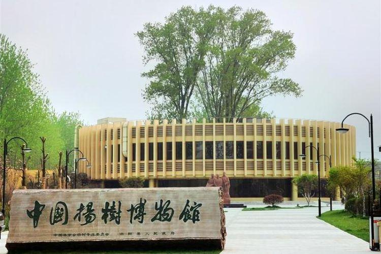 China Yangshu Museum