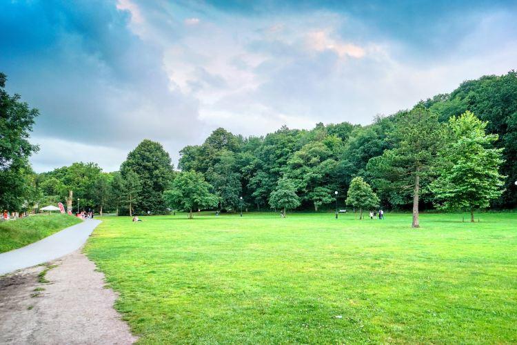 Slottsskogen公園