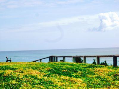 Astwood Cove Beach