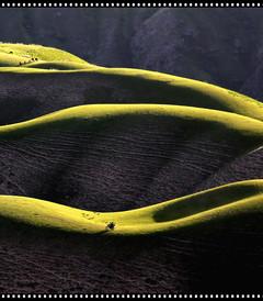 [中国游记图片] 《足迹——美丽在路上》