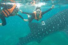 菲律宾游第十七天:宿务奥斯洛布~墨宝