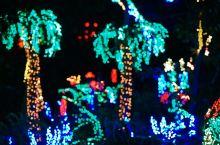 美国西雅图贝尔维尤灯光艺术