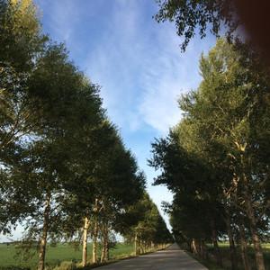 加格达奇游记图文-这个8月,我们一路向祖国的最北边的风景出发!