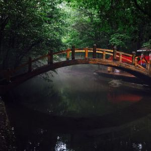 吉林龙湾群国家森林公园旅游景点攻略图