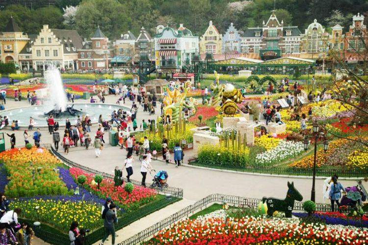 Everland Resort4