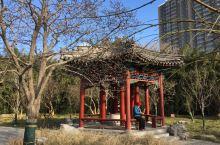 北京·中国  月坛公园 北京月坛公园。北京最有名的公园之一是天坛公园,实际上,北京还有一个比较有名的