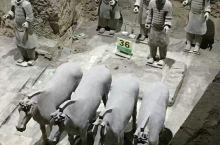秦军风彩 秦始皇兵马俑展示了秦代的手工艺,秦代的军阵有步兵,骑兵,车兵,武器装备的统一生产,展示了秦