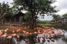 海口澄迈县附近公园