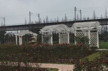 镇海植物园