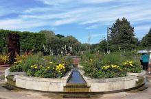 芝加哥植物园