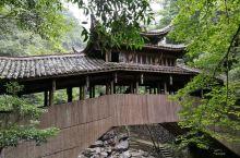 泰顺乌岩岭景区