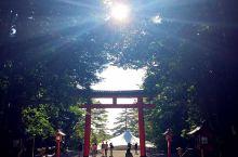 九州·霧島神宮