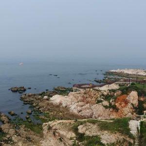 北方饺子王(海水浴场一店)旅游景点攻略图