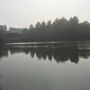 范蠡湖旅游景点攻略图