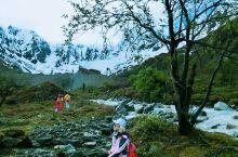 朋友问我:你去过最美的地方是哪里?我说:波密的灵芝西藏很