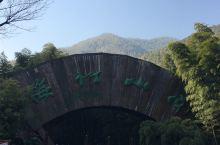 南山竹海风景区