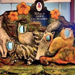 猫博物馆旅游景点攻略图