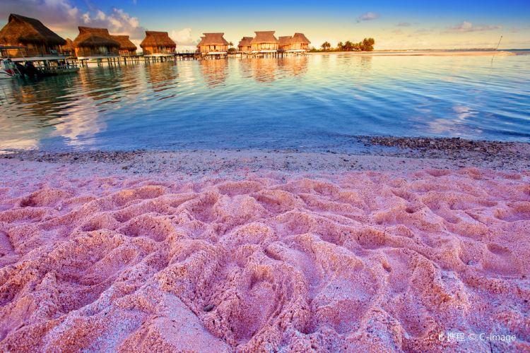 Pink Sand Beach1