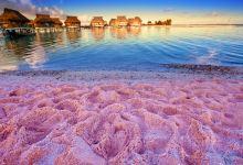巴哈马拿骚+粉色沙滩+玻璃窗大桥一日游