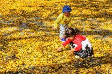 平顶山的后花园,春天赏花,夏天戏水,秋天摘果,冬天温泉…… 四棵树乡 秋天的文殊寺 夏天的杜鹃花 远