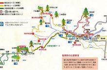 白谷云水峡Shiratani Unsuikyo Ravine 白谷云水峡位于屋久岛北部,是一片424