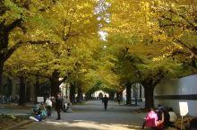 一个人的出发,一个人的梦想——日本