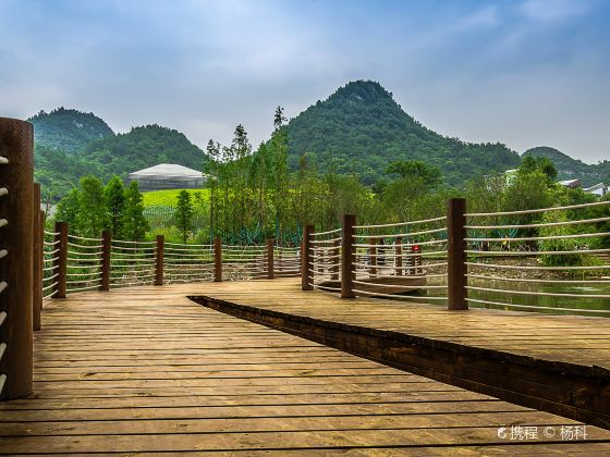 花溪國家城市濕地公園十里河灘景區