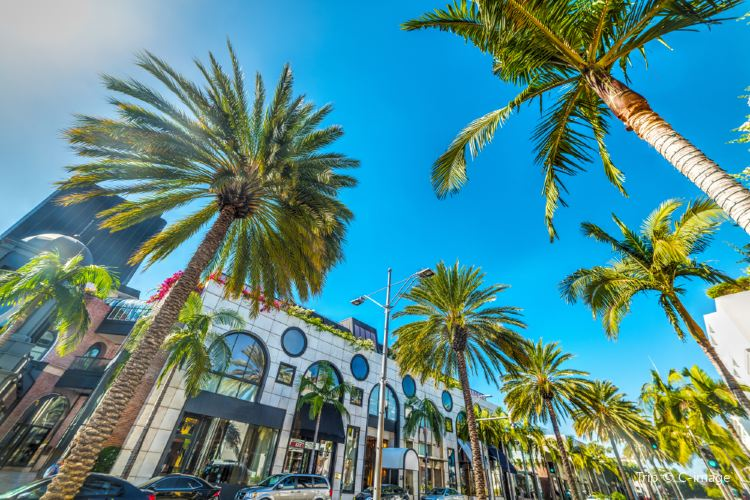 Rodeo Drive1