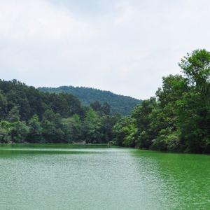 三峡湿地—杨守敬书院旅游景点攻略图