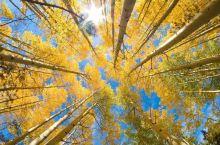 连夏秋两季都这么美,这个地方的风景超赞!