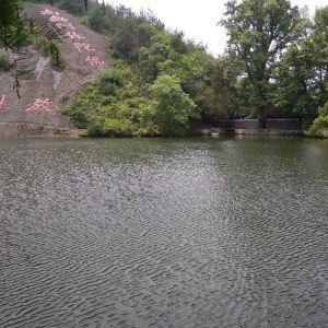 放生池旅游景点攻略图