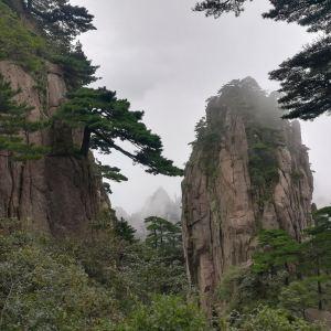 步仙桥旅游景点攻略图
