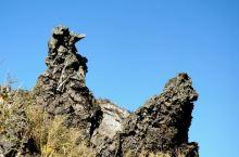 神似板壁岩