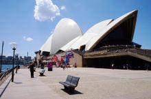悉尼,你不会不去的歌剧院