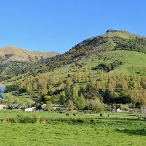 莎玛拉羊驼牧场旅游景点攻略图